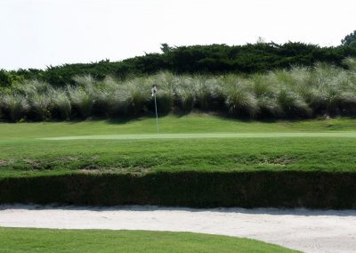 wizard-golf-17