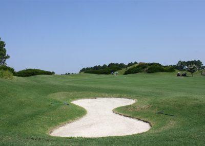 wizard-golf-19